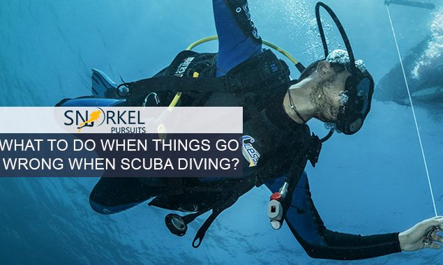 WHAT TO DO WHEN THINGS GO WRONG WHEN SCUBA DIVING?