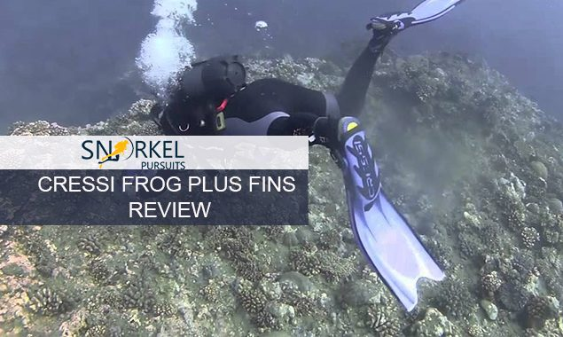 CRESSI FROG PLUS FINS REVIEW