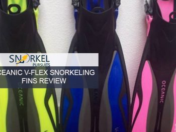 OCEANIC V-FLEX SNORKELING FINS REVIEW