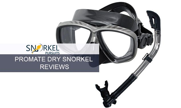 PROMATE DRY SNORKEL REVIEWS
