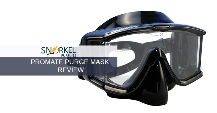 PROMATE PURGE MASK REVIEW