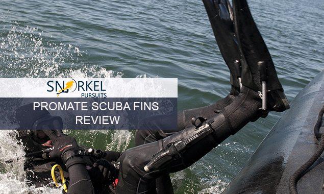 PROMATE SCUBA FINS REVIEW