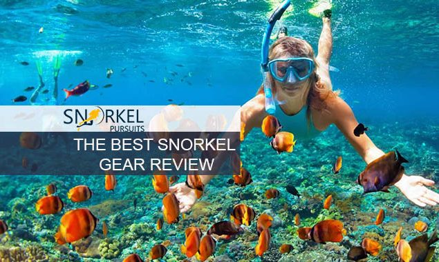THE BEST SNORKEL GEAR REVIEW